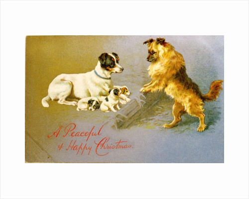 Puppies in the Straw, Victorian postcard by Unknown