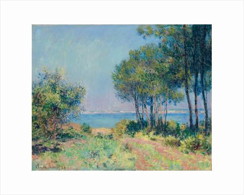 Fir Trees at Varengeville by Claude Monet