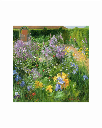 Sweet Rocket, Foxgloves and Irises by Timothy Easton