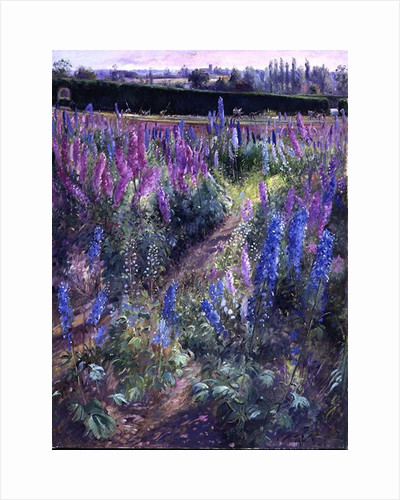 Delphiniums and Hoers by Timothy Easton