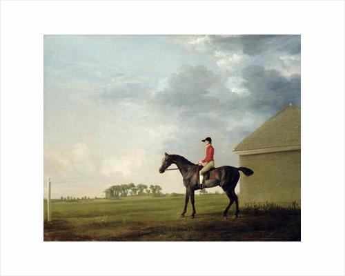 Gimcrack with John Pratt up on Newmarket Heath, 1765 by George Stubbs