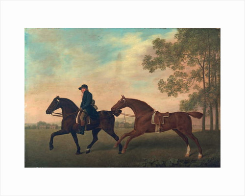 Two Hacks, 1789 by George Stubbs