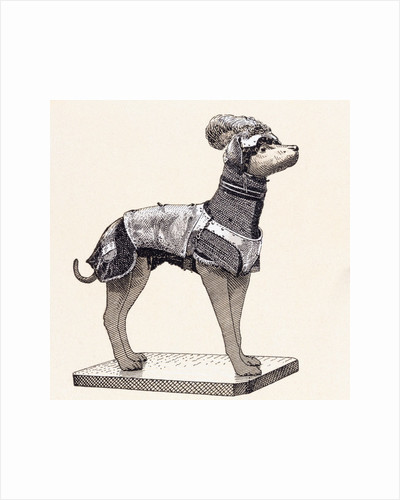 Hound in body armour by English School