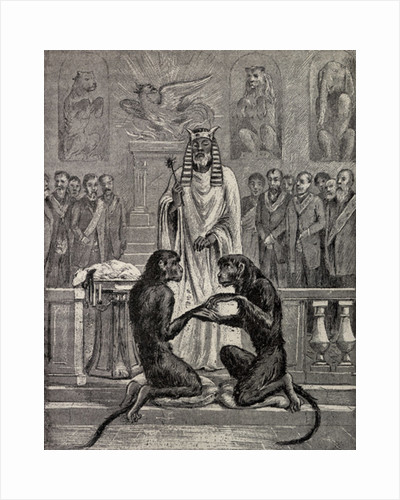Sacrificing the Lamb during the The Marriage of the Apes by Unknown