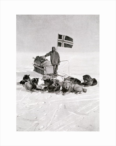 Captain Roald Amundsen at the South Pole by Unknown