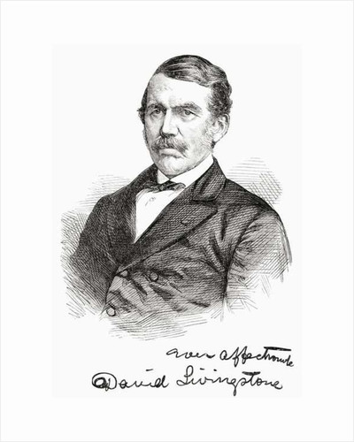 David Livingstone by Anonymous