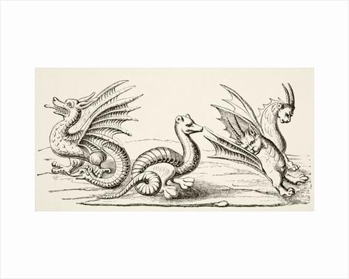 Dragons by English School