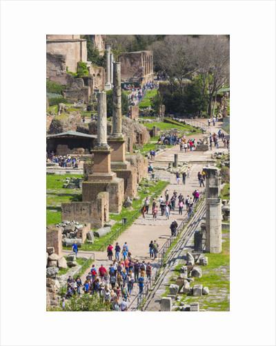 The Roman Forum, Via Sacra, the Sacred Way by Anonymous