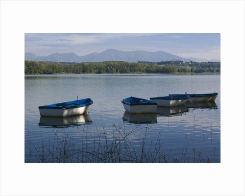 Banyoles, Spain. The lake by Anonymous