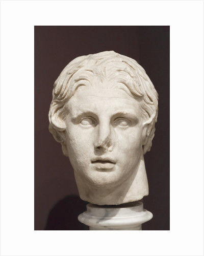 Head of Alexander the Great, 2nd century BC by Greek School