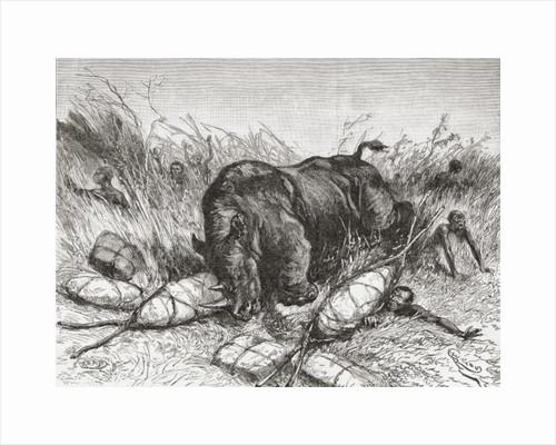 A rhinoceros attacks an expedition by Spanish School