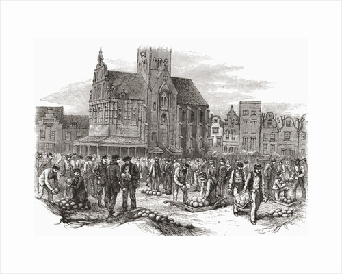 The Cheese Market at Hoorn, the Netherlands in the 19th century by Anonymous