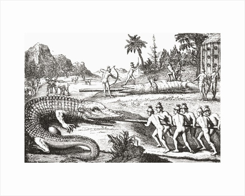 Hunting alligators in the Southern States of America by From The Strand Magazine published 1897.