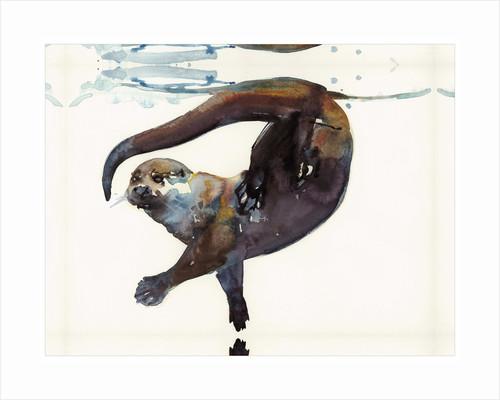 Otter Study II -'Talisker' by Mark Adlington