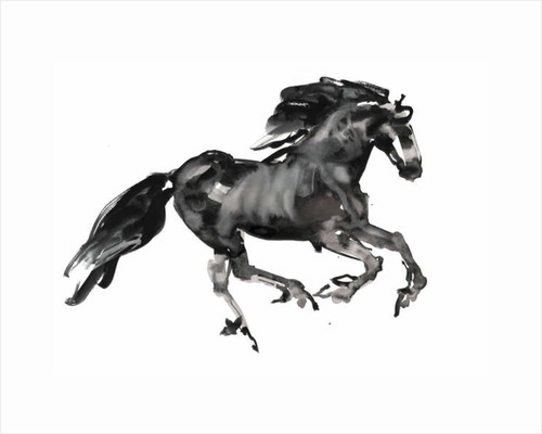 Gallop, 2015 by Mark Adlington