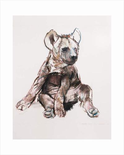 Hyaena Pup, 2019 by Mark Adlington
