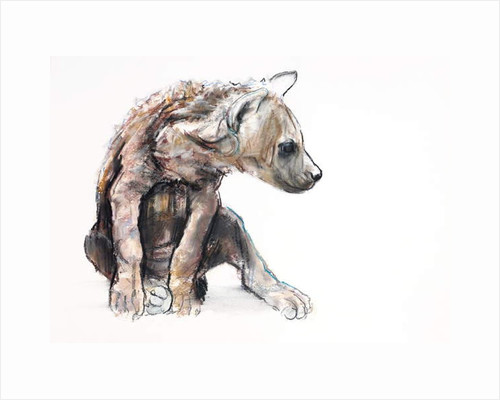 Hyaena Pup, 2019 by Mark Adlington