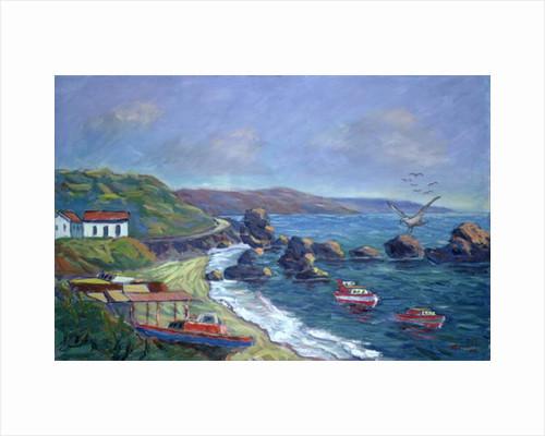 Fishermen's Rocks by Carlton Murrell