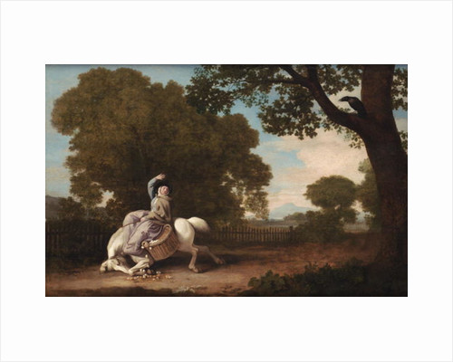 The Farmer's Wife and the Raven, 1783 by George Stubbs