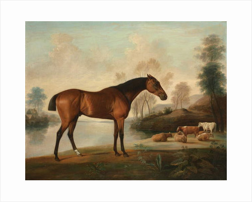 Mr Ogilvie's Bay Racehorse on a Riverbank, with a Group of Cows in the Middle Distance, c.1770 by George Stubbs