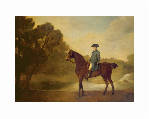 A gentleman on a bay hunter, 1771 by George Stubbs
