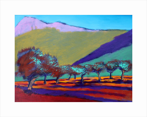 Olive Trees by Paul Powis