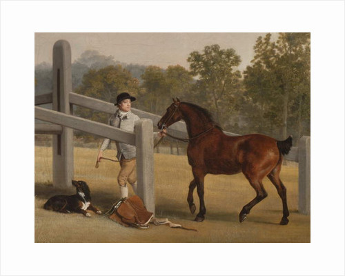 Detail from William Henry Cavendish-Bentinck, 3rd Duke of Portland and his younger brother Lord Edward, 1767-68 by George Stubbs