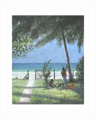 Coconut Man Calls, Sri Lanka by Lincoln Seligman