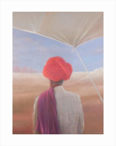 Rajasthan farmer by Lincoln Seligman