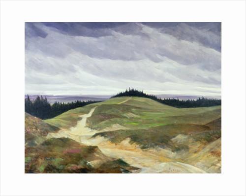 Sandy Path by Christopher Richard Wynne Nevinson