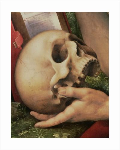 St. Jerome by Cesare da Sesto
