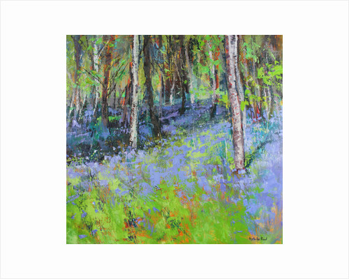 Bluebells and Birches by Sylvia Paul