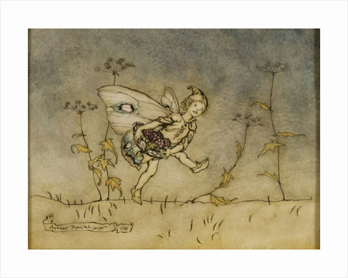 Fairy by Arthur Rackham