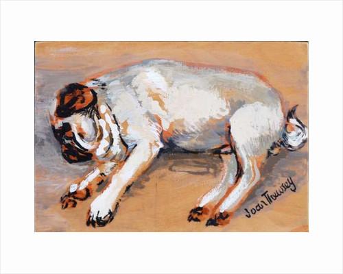Hogarth Sleeping by Joan Thewsey