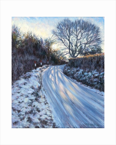 Winter Light by Tilly Willis
