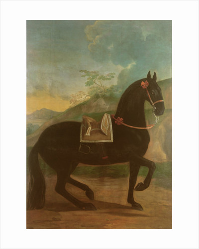 A Black Horse sporting a Spanish Saddle by Johann Georg Hamilton