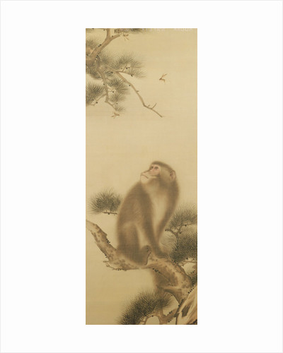 Monkey watching a dragonfly by Japanese School