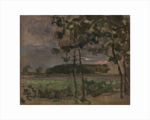 Field with Young Trees in the Foreground, c.1907 by Piet Mondrian