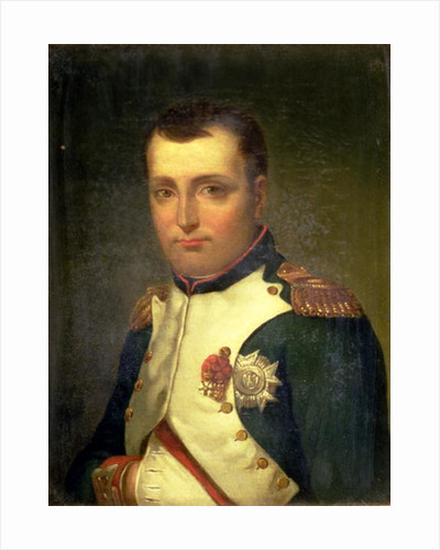 Napoleon Bonaparte by Jacques Louis David