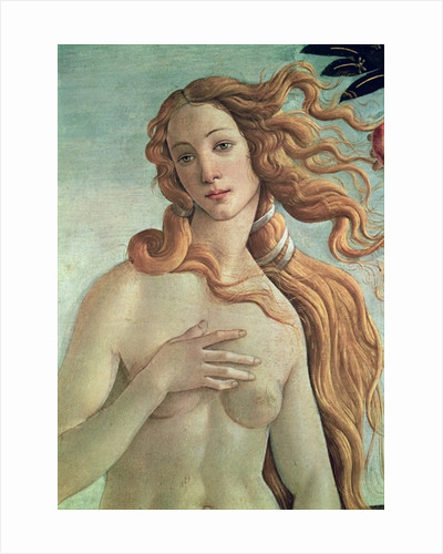 Venus by Sandro Botticelli