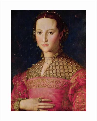 Eleonora da Toledo by Agnolo Bronzino