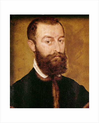 Portrait of a Man with a Beard or, Portrait of a Man with Brown Hair by Corneille de Lyon