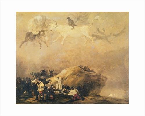 Capriccio Scene: Animals in the Sky by Francisco Jose de Goya y Lucientes