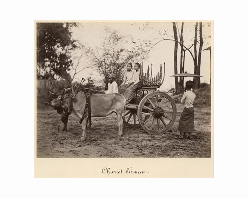 Cart pulled by two oxen at Mandalay, Burma by English Photographer