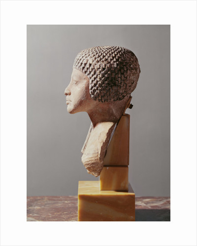 Left profile of the head of a Princess from the family of Akhenaten, New Kingdom by Egyptian 18th Dynasty
