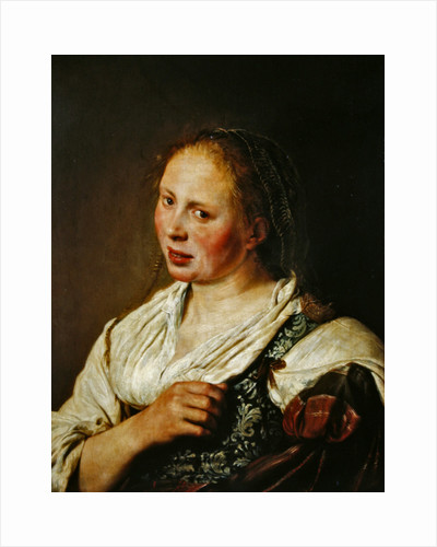 Painting of the young peasant by Salomon de Bray