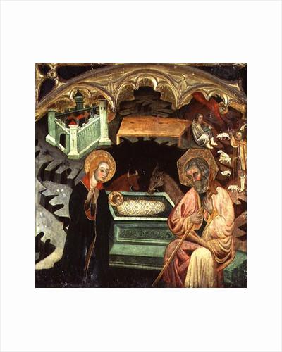 Nativity by Spanish School