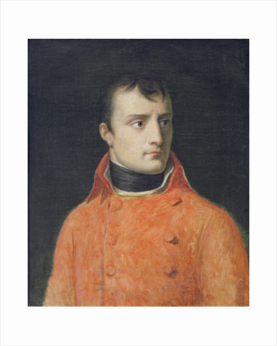 Napoléon Bonaparte, First Consul by Anne Louis Girodet de Roucy-Trioson