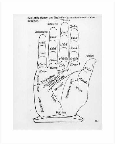 Palmistry by English School