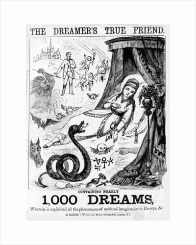 The Dreamer's True Friend by English School